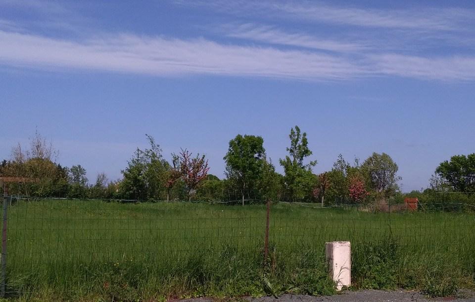 Terrains du constructeur LMP CONSTRUCTEUR • 662 m² • ANGLES