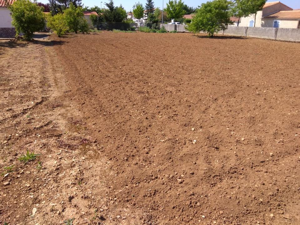 Terrains du constructeur LMP CONSTRUCTEUR • 631 m² • CHAMPAGNE LES MARAIS