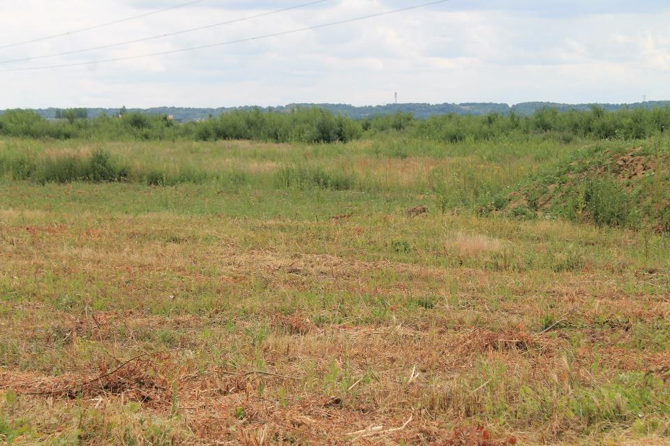 Terrains du constructeur MAISONS FRANCE CONFORT • 417 m² • MILLY LA FORET