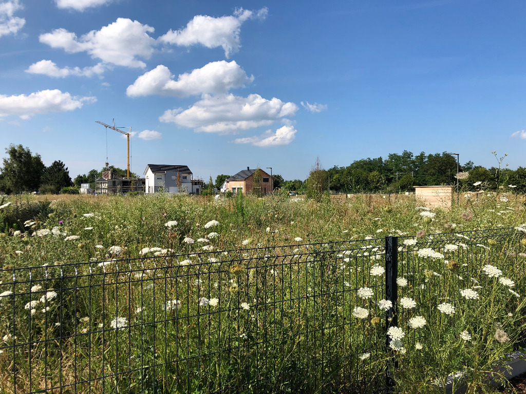 Terrains du constructeur GROUPE BATIGE • 420 m² • SIERENTZ