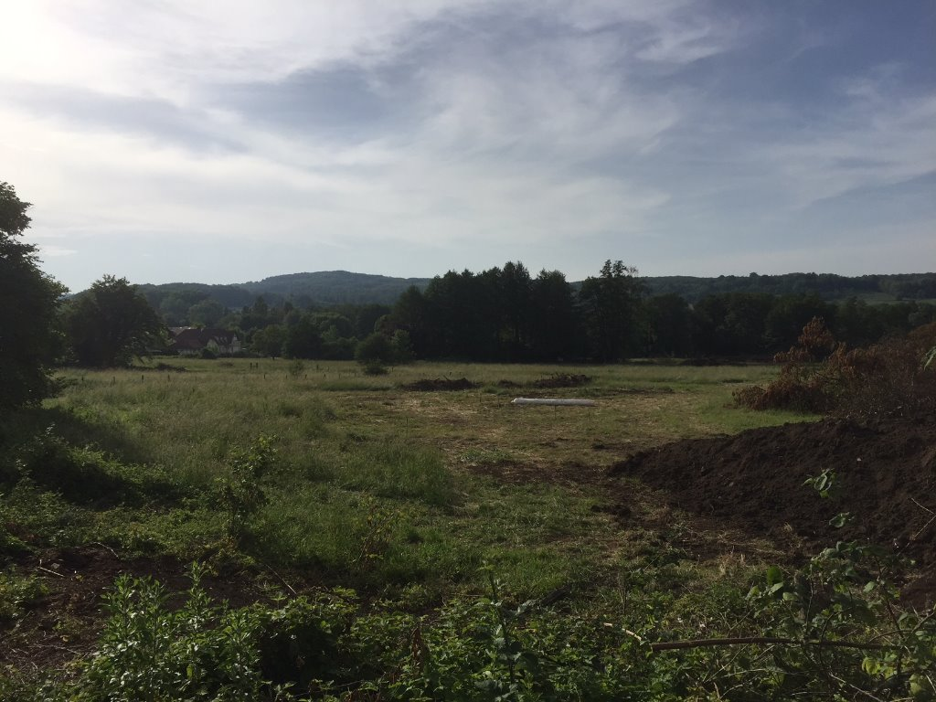 Terrains du constructeur GROUPE BATIGE • 607 m² • LEYMEN
