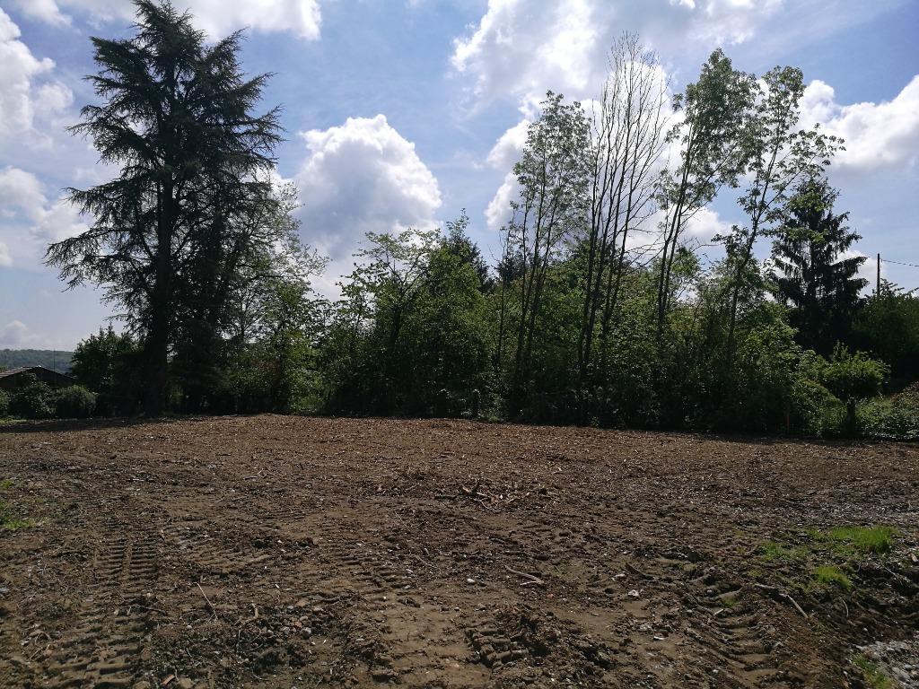 Terrains du constructeur GROUPE BATIGE • 701 m² • HOCHSTATT