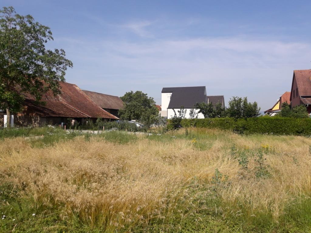 Terrains du constructeur BATIGE • 400 m² • WIDENSOHLEN