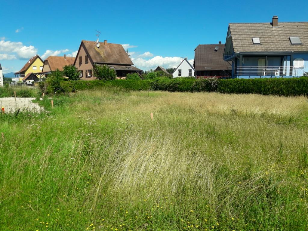 Terrains du constructeur GROUPE BATIGE • 400 m² • WIDENSOHLEN