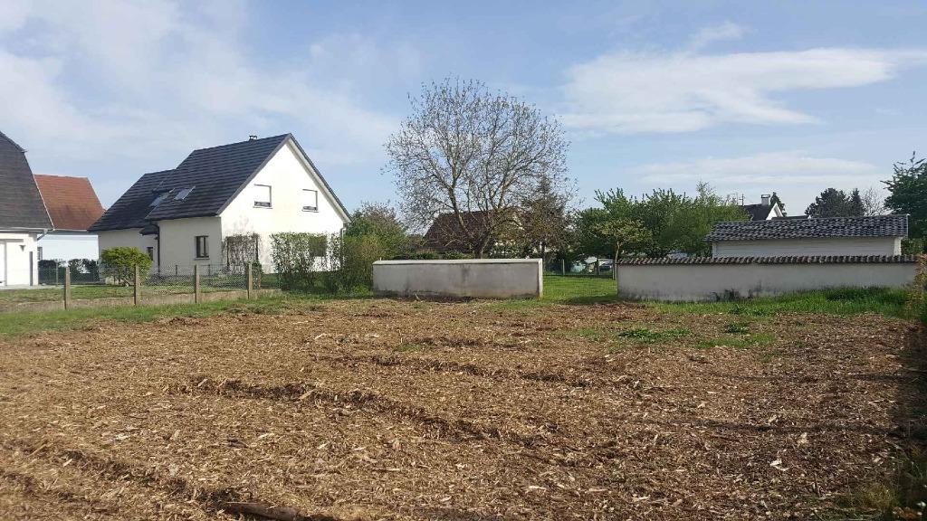 Terrains du constructeur BATIGE • 550 m² • REININGUE