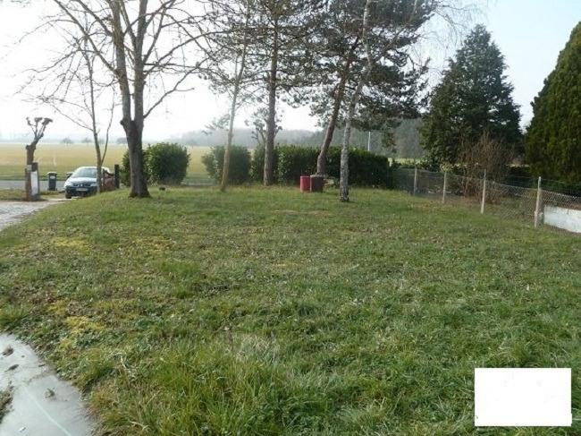 Terrains du constructeur MAISONS FRANCE CONFORT • 244 m² • DORDIVES
