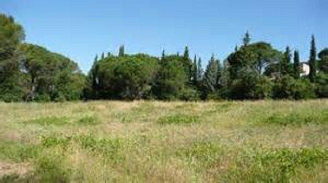 Terrains du constructeur MAISONS FRANCE CONFORT • 830 m² • SAVINS