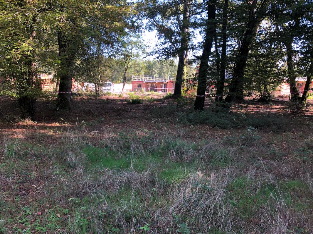 Terrains du constructeur GIB CONSTRUCTION • 800 m² • SAINT AUBIN DE MEDOC