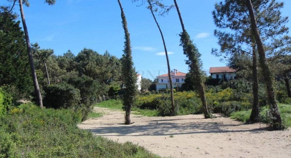 Terrains du constructeur MAISONS FRANCE CONFORT • 680 m² • BERVILLE SUR MER