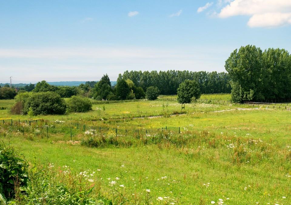Terrains du constructeur MAISONS FRANCE CONFORT • 2631 m² • CLARBEC