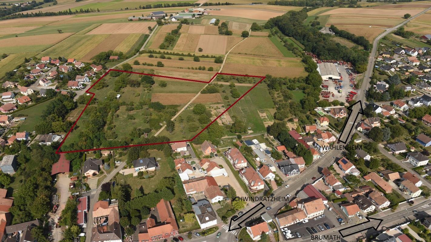Terrains du constructeur Crédit Mutuel Aménagement foncier • 501 m² • MOMMENHEIM