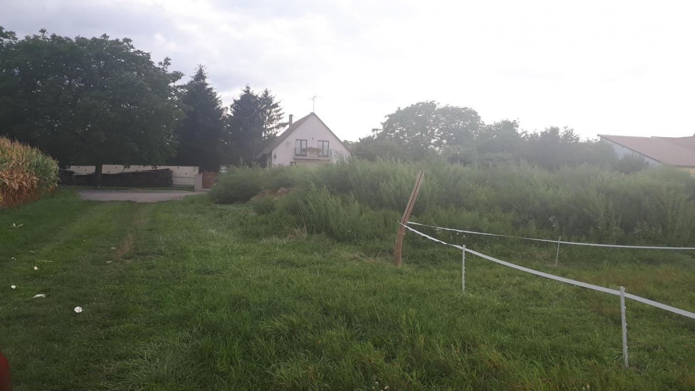 Terrains du constructeur Crédit Mutuel Aménagement foncier • 443 m² • BLAESHEIM