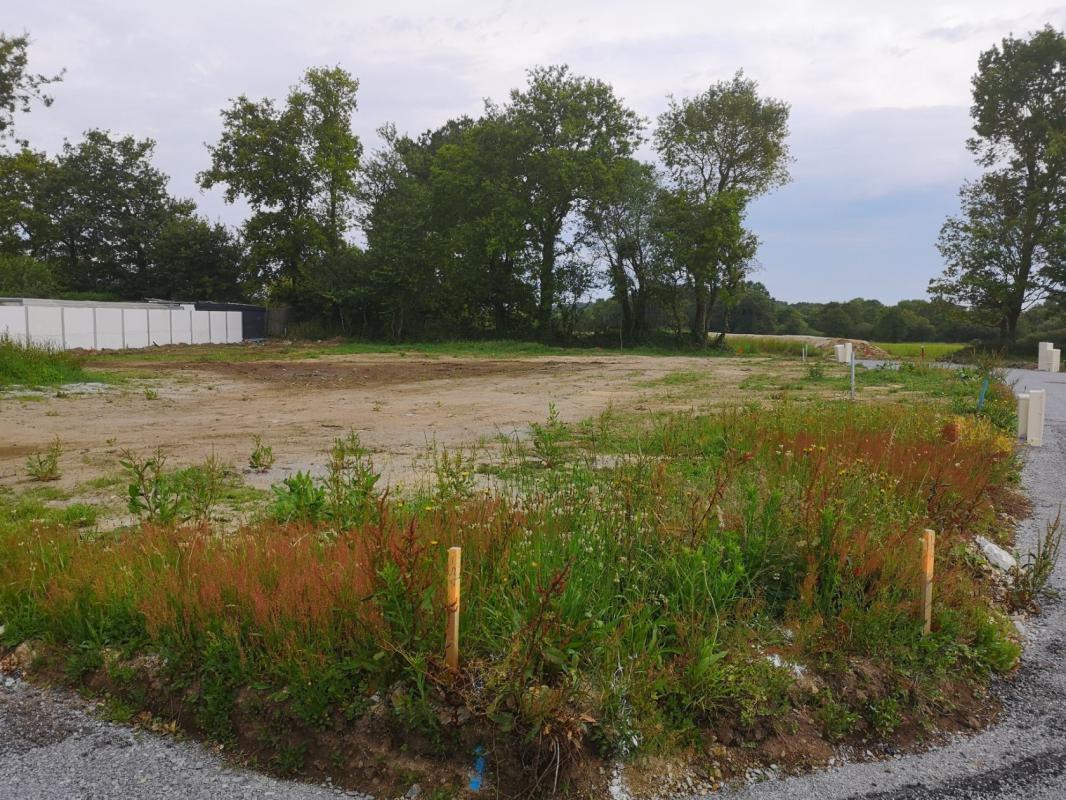 Terrains du constructeur MAISONS KERBEA VANNES • 521 m² • ARZAL