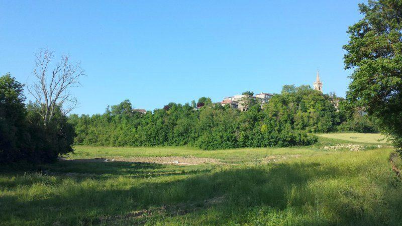 Terrains du constructeur MAISONS FRANCE CONFORT • 1240 m² • LE FAGET