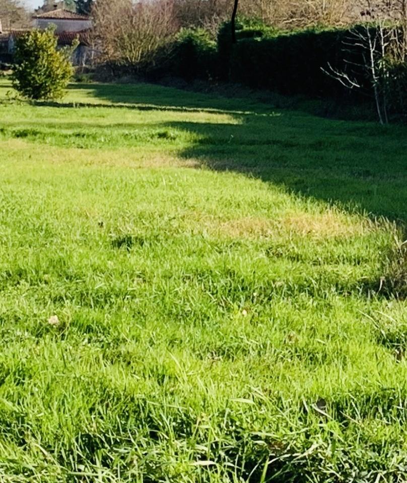 Terrains du constructeur MAISONS FRANCE CONFORT • 600 m² • LANTA