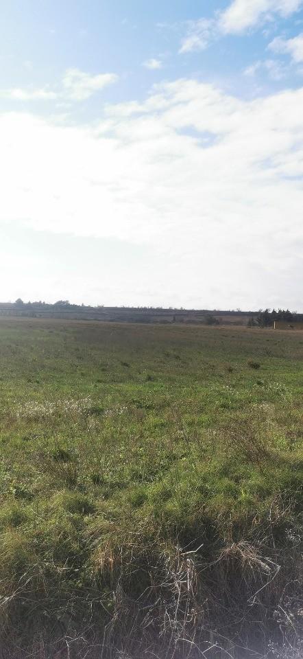 Terrains du constructeur OC RESIDENCES - CARCASSONNE • 400 m² • RIEUX MINERVOIS