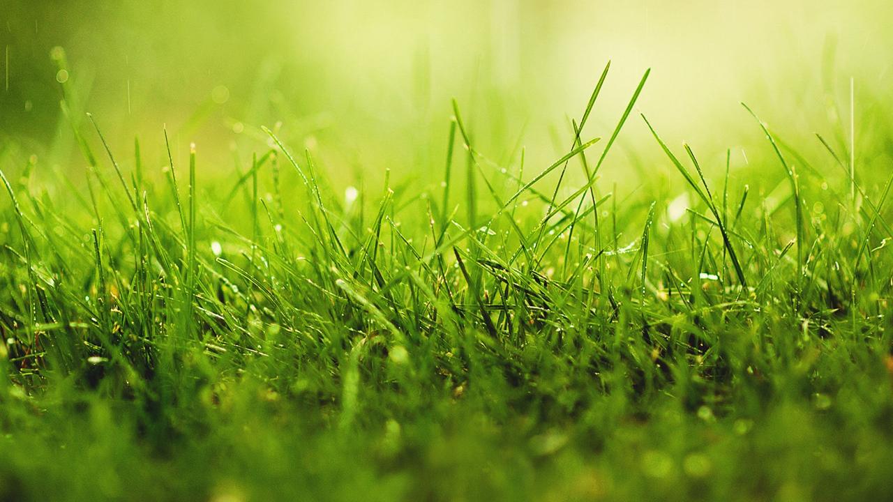 Terrains du constructeur MAISONS CLAUDE RIZZON • 324 m² • POURNOY LA GRASSE