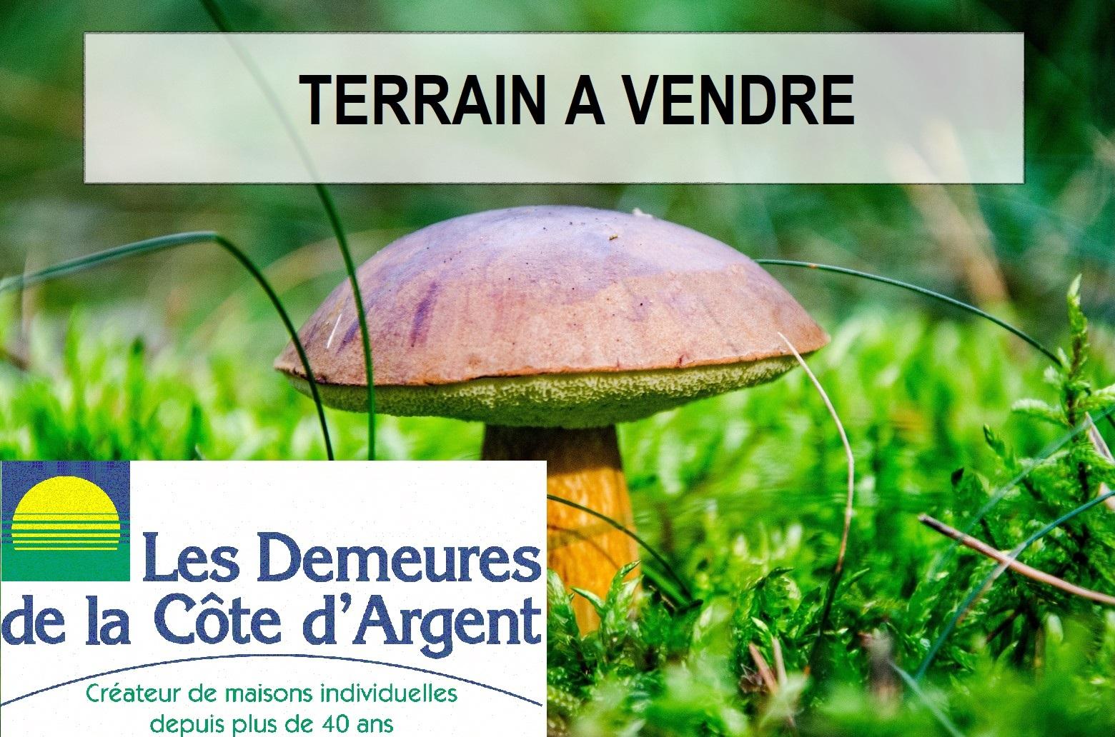 Terrains du constructeur LES DEMEURES DE LA COTE D'ARGENT • 1000 m² • SOLFERINO