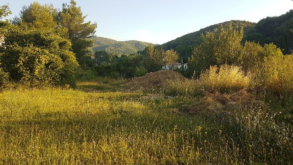 Terrains du constructeur MAISONS FRANCE CONFORT • 600 m² • SAINT ZACHARIE