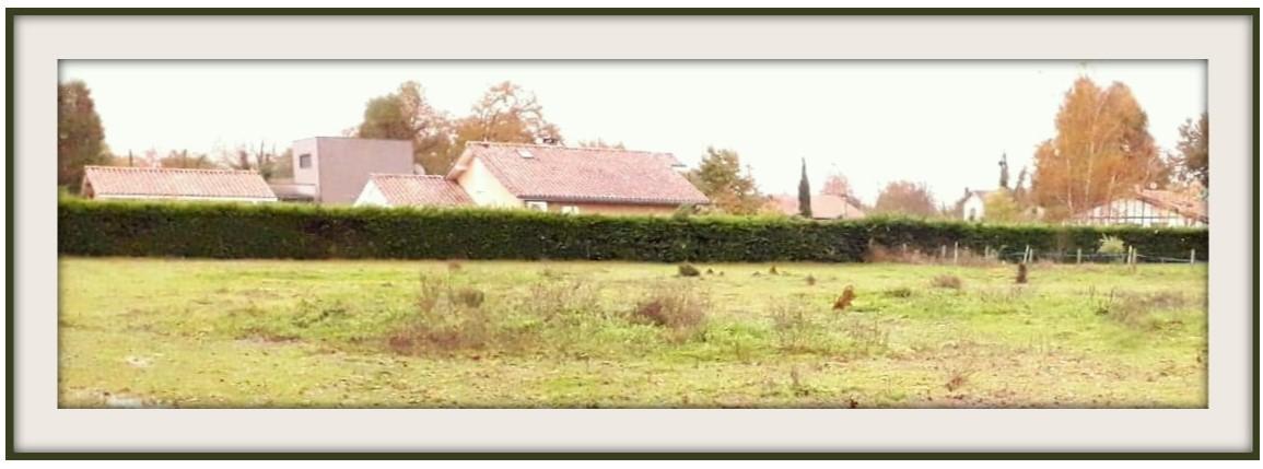 Terrains du constructeur MAISONS CONFORECO - AGENCE MONT DE MARSAN • 1332 m² • BASCONS