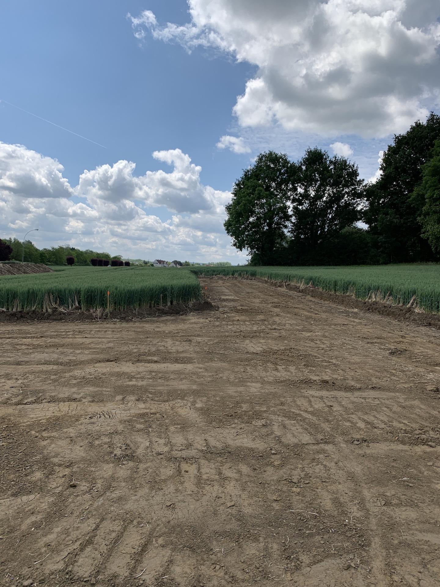 Terrains du constructeur RESIDENCES PICARDES BDL • 420 m² • ARMANCOURT