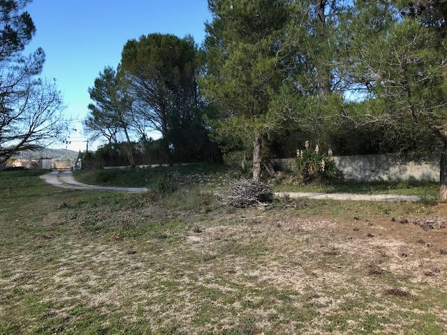 Terrains du constructeur MAISONS BLANCHE • 900 m² • BRIGNOLES