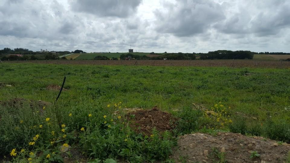 Terrains du constructeur MAISONS FRANCE CONFORT • 420 m² • MARQUISE