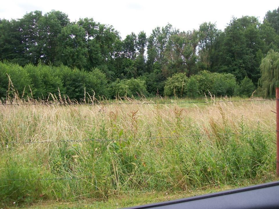 Terrains du constructeur MAISONS FRANCE CONFORT • 450 m² • LE PLESSIER SUR SAINT JUST
