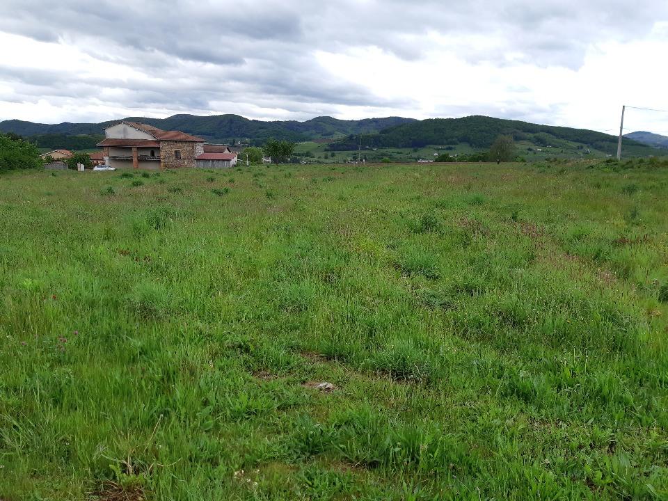 Maisons + Terrains du constructeur MAISONS FRANCE CONFORT • 90 m² • LES OLMES