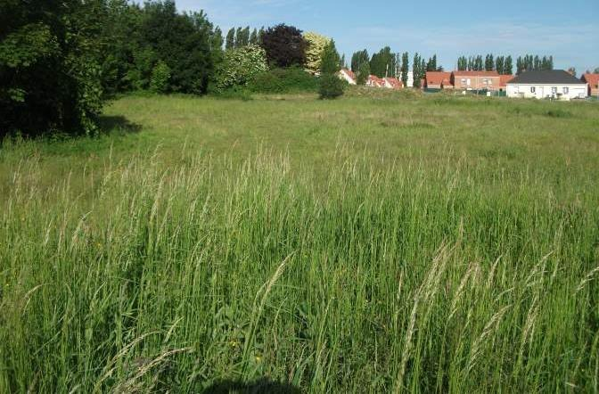 Terrains du constructeur MAISONS FRANCE CONFORT • 492 m² • CANTIN