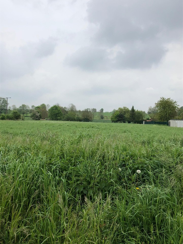 Terrains du constructeur MAISONS FRANCE CONFORT • 512 m² • NOYELLES SOUS BELLONNE