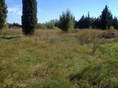 Terrains du constructeur VILLAS LA PROVENCALE • 800 m² • SAINT REMY DE PROVENCE