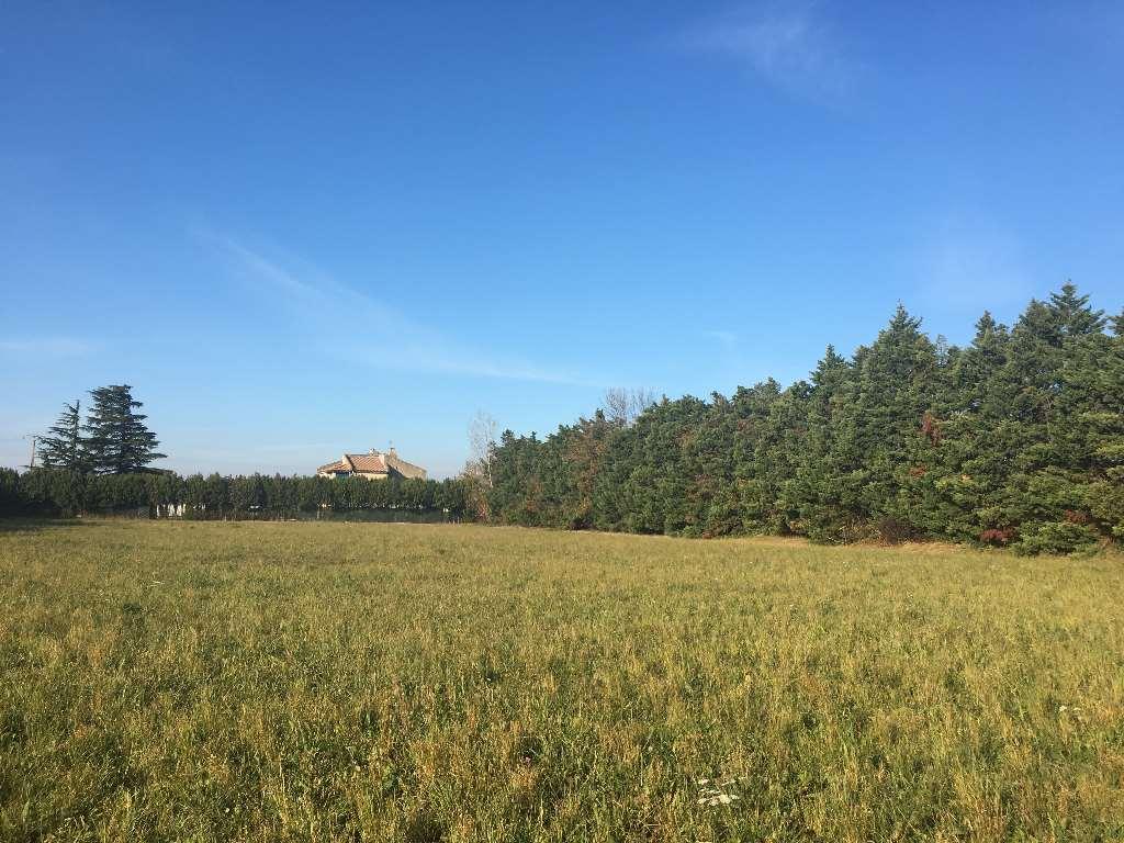 Terrains du constructeur VILLAS LA PROVENCALE • 730 m² • RAPHELE LES ARLES