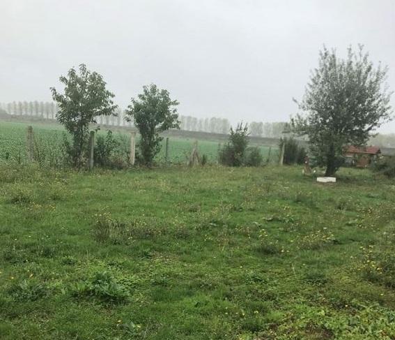 Terrains du constructeur LES MAISONS BARBEY MAILLARD • 297 m² • CRISENOY