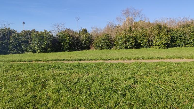 Terrains du constructeur LES MAISONS BARBEY MAILLARD • 513 m² • VAUX LE PENIL