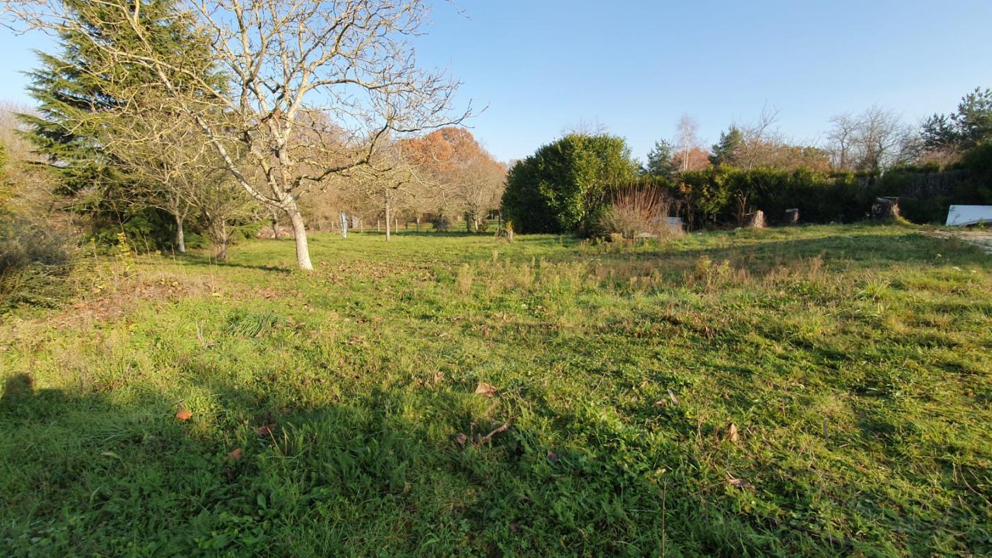 Terrains du constructeur LES MAISONS BARBEY MAILLARD • 1235 m² • PRINGY