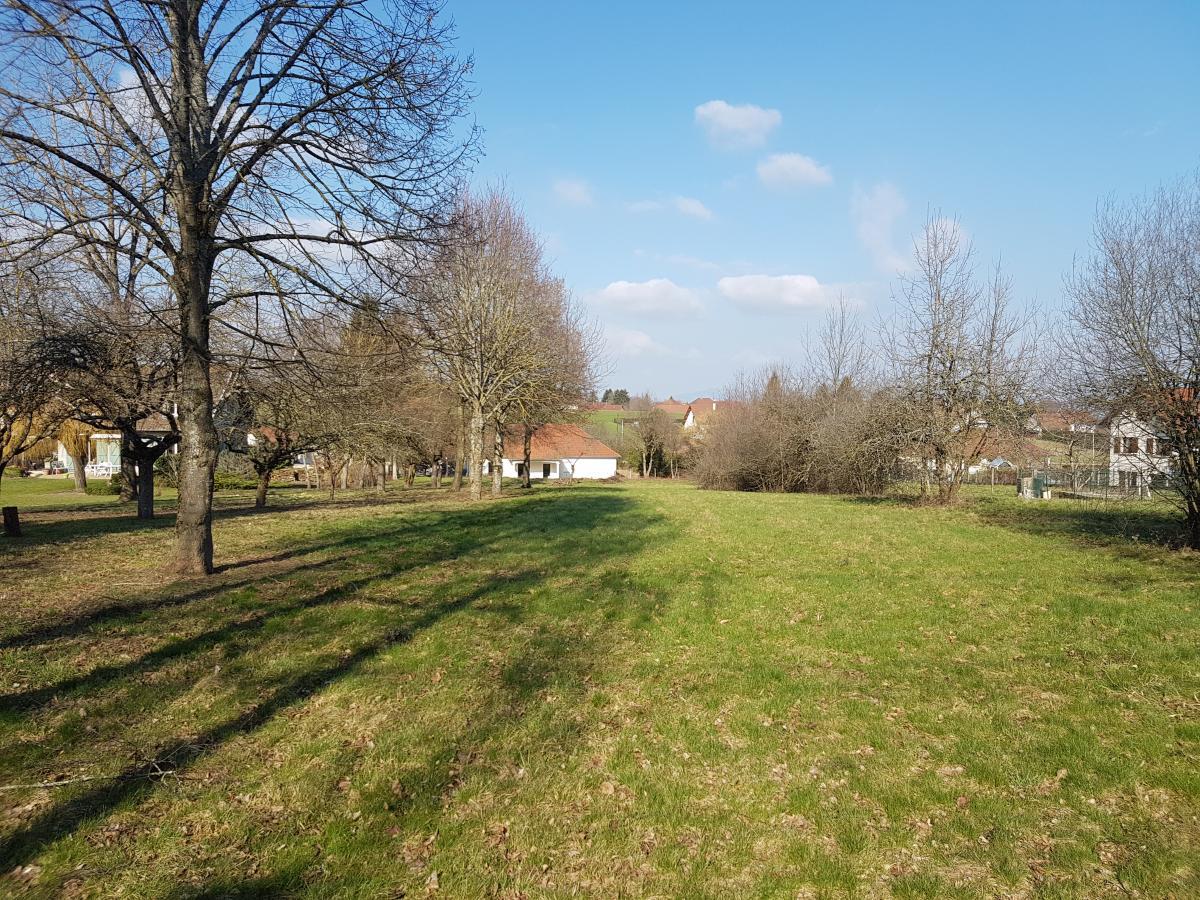 Terrains du constructeur TRADICONFORT BOURGOIN • 900 m² • SAINT ANDRE LE GAZ
