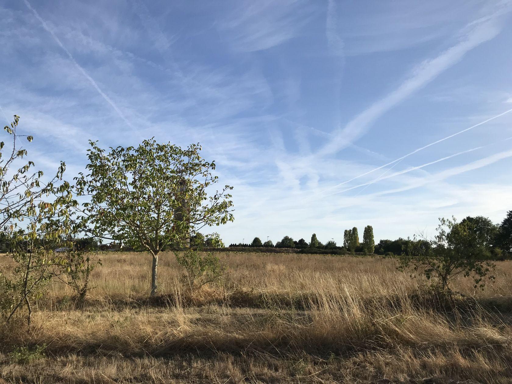 Terrains du constructeur MAISONS I  • 660 m² • AZAY SUR CHER