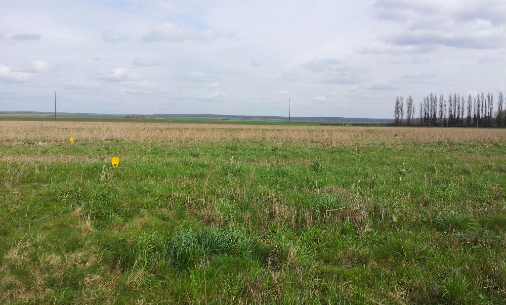 Terrains du constructeur ORPI AGENCE CARON • 932 m² • GISORS