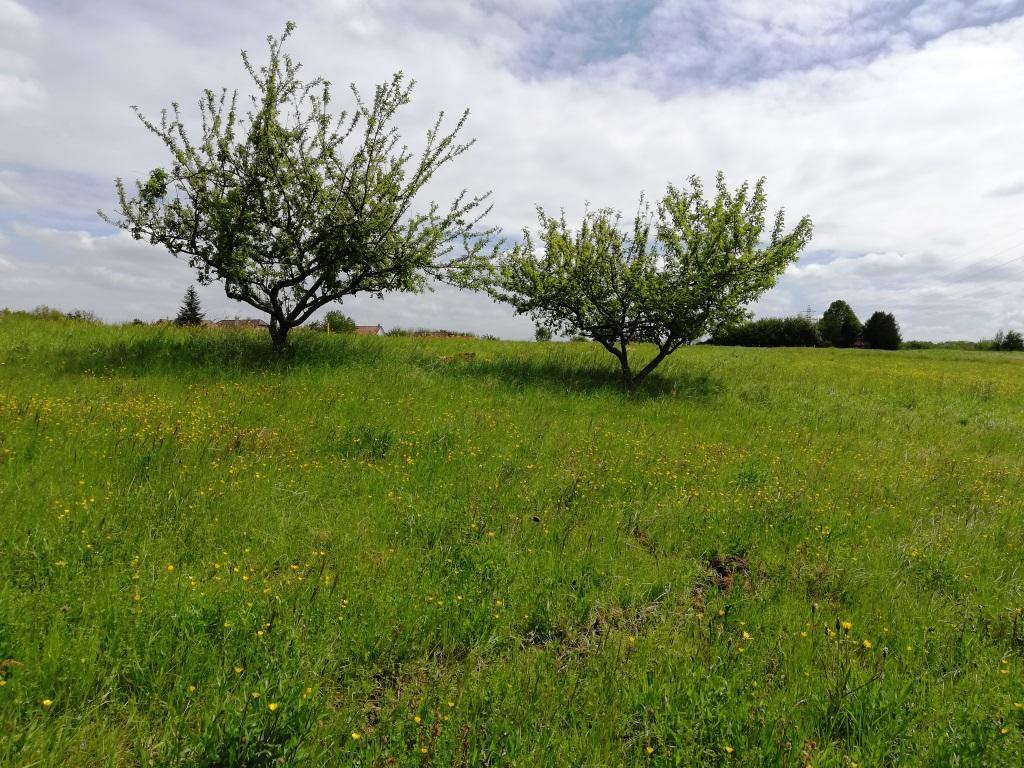 Terrains du constructeur NEOLIA • 627 m² • SAINTE SUZANNE