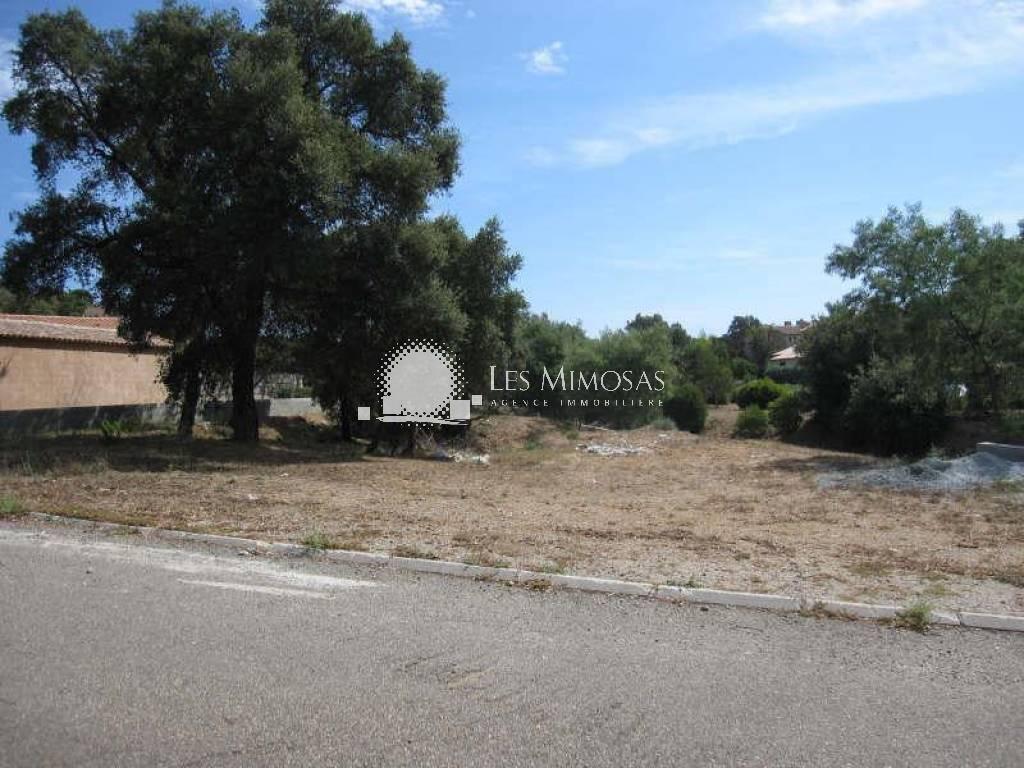 Terrains du constructeur AGENCE LES MIMOSAS • 985 m² • ROQUEBRUNE SUR ARGENS