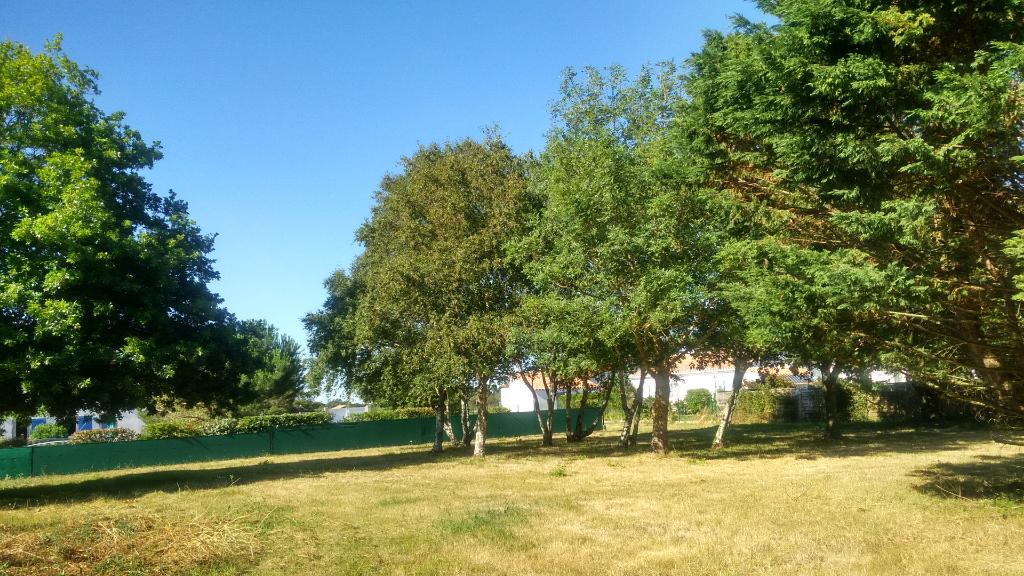 Terrains du constructeur ORPI AGENCE DES DEUX LIONS • 1751 m² • TALMONT SAINT HILAIRE