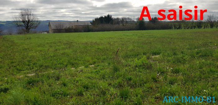 Terrains du constructeur D ARC IMMO 81 • 1310 m² • SAINT CIRGUE