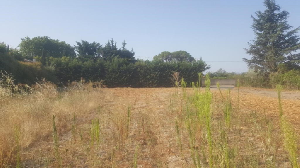 Terrains du constructeur ALP IMMOBILIER • 728 m² • TAILLADES