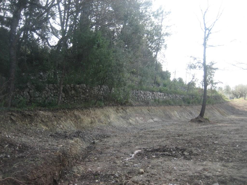 Terrains du constructeur AGENCE TERRE D ICI • 1041 m² • LORGUES