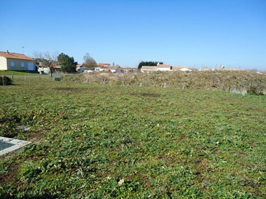 Terrains du constructeur L ADRESSE LONGEVILLE SUR MER • 401 m² • LA TRANCHE SUR MER