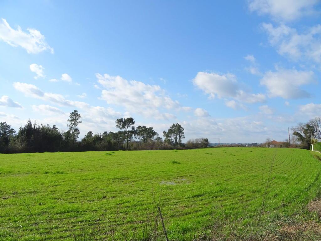 Terrains du constructeur STEPHANE PLAZA IMMOBILIER ORTHEZ • 5330 m² • ORTHEZ