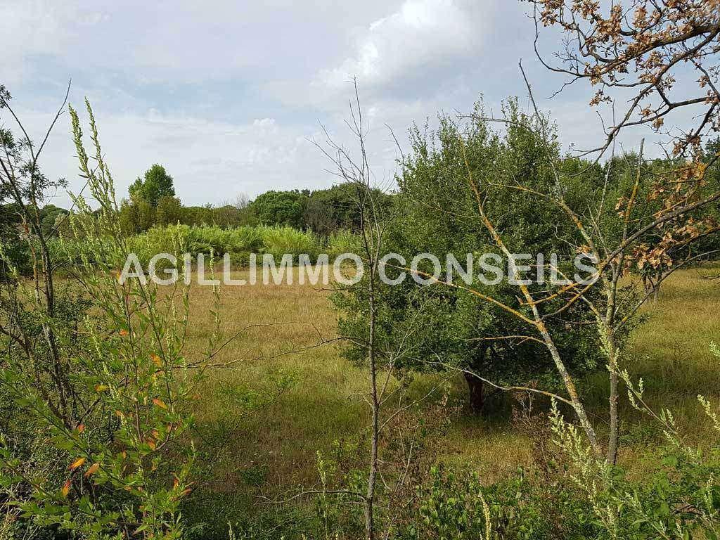 Terrains du constructeur AGENCE AGILLIMO CONSEILS • 0 m² • PUGET SUR ARGENS