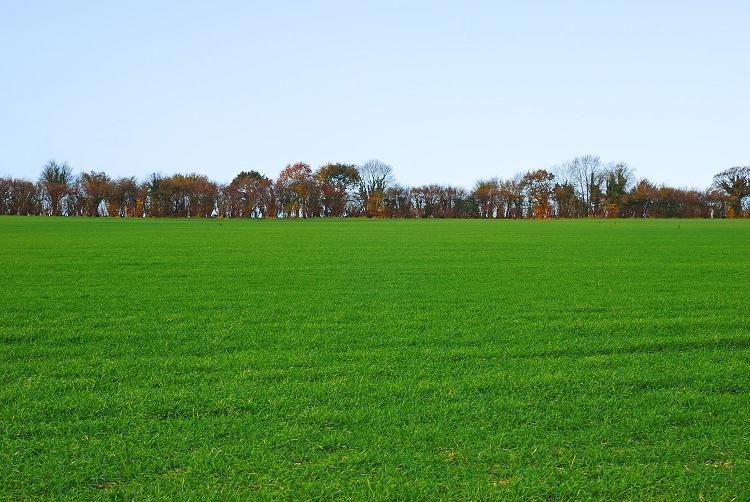 Terrains du constructeur MAISONS FRANCE CONFORT • 1000 m² • BUCHY