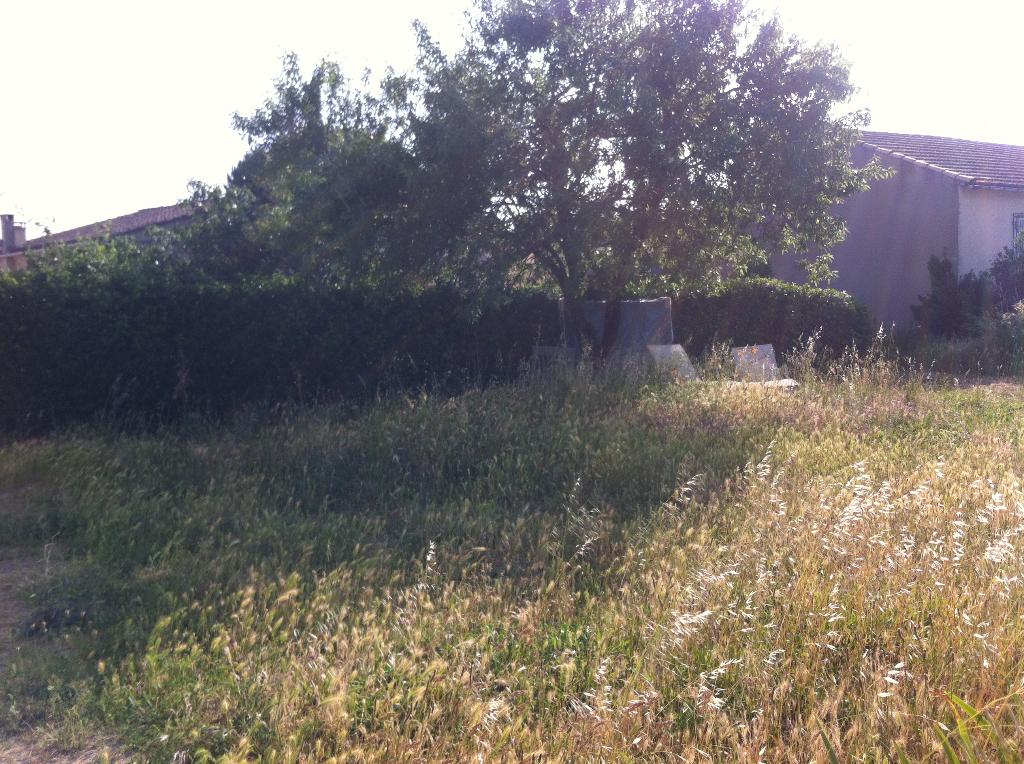 Terrains du constructeur GUY HOQUET L IMMOBILIER • 800 m² • CARCASSONNE